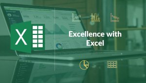 Excellence with Excel: The Basics | Bohubrihi