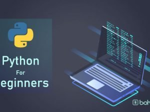 Python for beginners- Bohubrihi online course