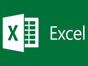 MS Excel Basics for Beginners